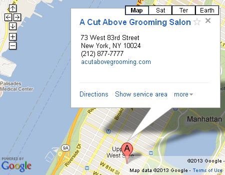 A cut above grooming salon about us for A cut above salon