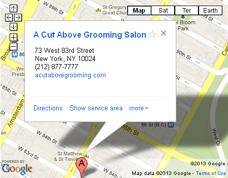 a cut above grooming salon about us
